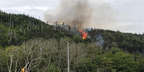 Police Believe Mount Scio Forest Fires Were Deliberately