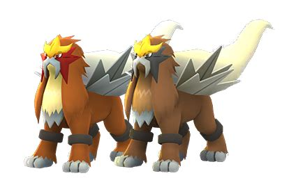 Pokémon Go Entei raid guide: counters, best movesets, and