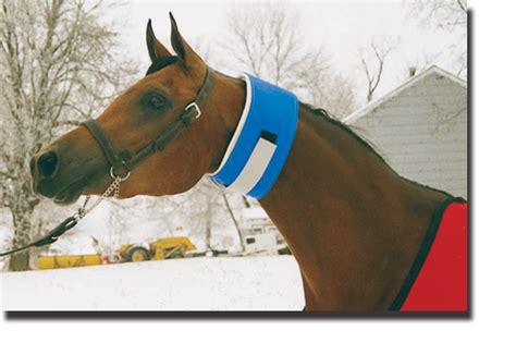 Show Horse Neck Sweat Products