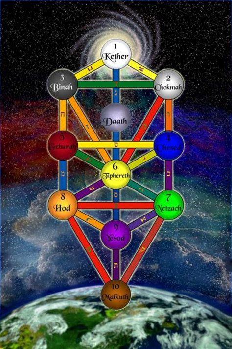 The Tree of Life Is Placed On The Back Of The Human Body